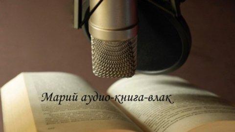 audiokniga-vlak-fill-marikeelsed-audioraamatud