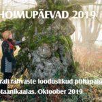 Botaanikaaias avatakse hõimupäevade puhul soome-ugri pühapaikade näitus